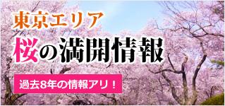 東京エリア桜の満開情報