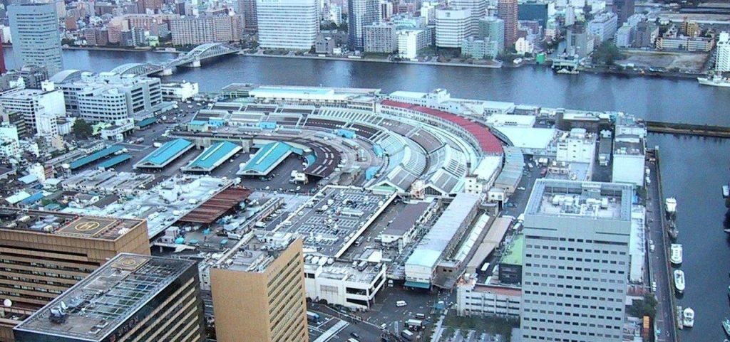 東京築地市場全景案内