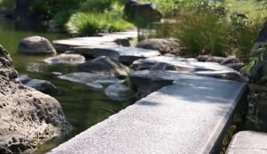 東京 貸し切り 屋形船 周辺観光地 清澄庭園 写真