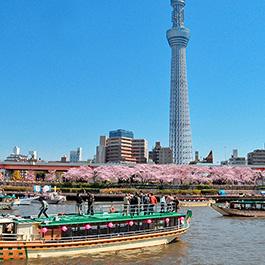 貸切屋形船東京吾妻橋乗船場周辺写真