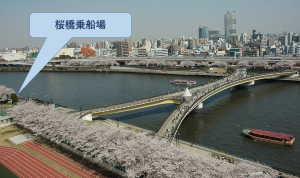 東京貸切り屋形船桜橋乗船場