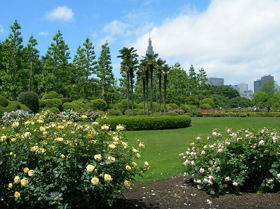 東京新宿御苑フランス庭園
