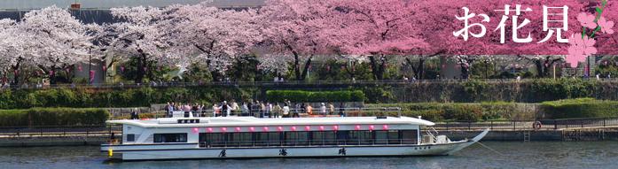 屋形船東京でのお花見貸切
