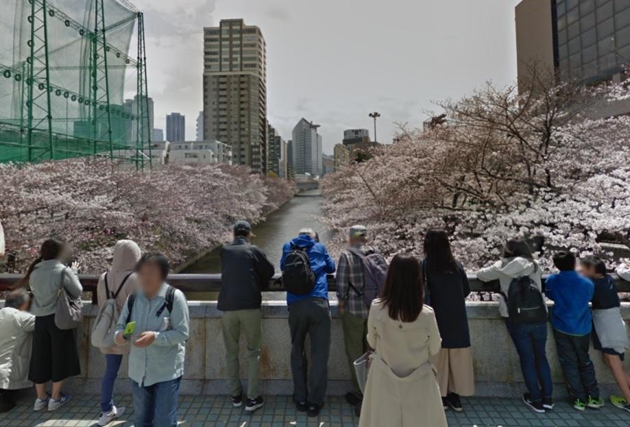目黒川ふれあい橋のお花見場所