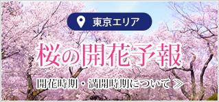 2020年版「東京お花見屋形船」の為の桜開花予報